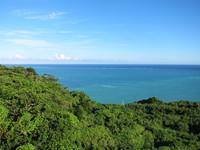 海と空と森2