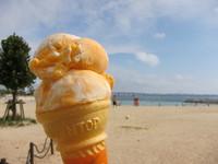 アイスとビーチ1