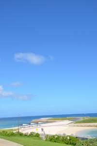 トロピカルビーチ 縦