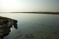 備瀬崎の海とアーサ取る人