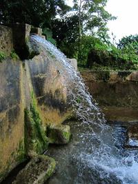 垣花樋川の溢れ出る水 縦