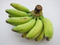 まだ熟してない島バナナ2014