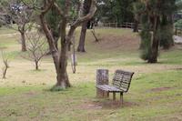 公園のベンチ2015
