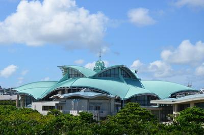木と沖縄コンベンションセンター