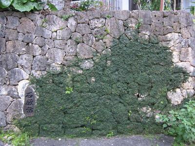 石敢當のある石垣2012