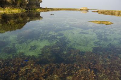 備瀬崎の澄んだ海2
