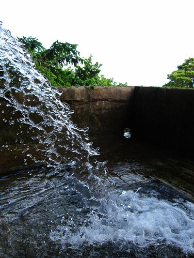 垣花樋川の水の様子