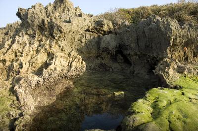 備瀬崎の岩