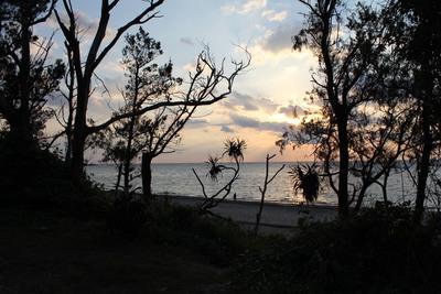嘉陽ビーチにはいる道の朝